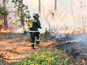 Seca gera incêndios no interior da Bahia (Foto: Reprodução/ TVBA)