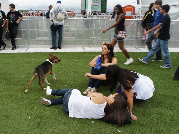 Animal surpreendeu o público que espera o início dos shows neste sábado (23) (Foto: Glauco Araújo/G1)