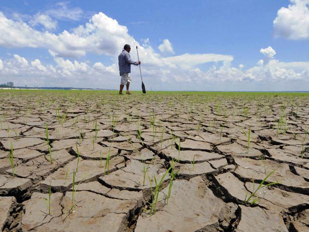 Seca no Rio Negro, em 2010, um dos principais afluentes do Rio Amazonas (Foto: Euzivaldo Queiroz/A Crítica/Reuters)