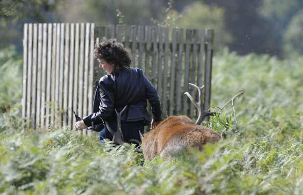 Mulher corre ao ser perseguida pelo animal (Foto: Robert Piper/Caters News)
