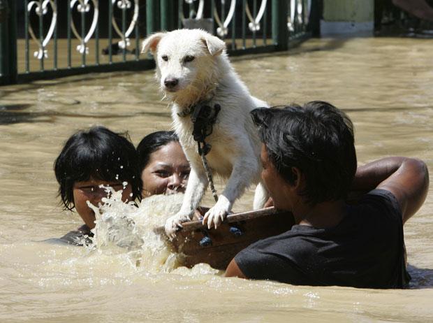 Filipinos retiram cachorro de estimação de área alagada na cidade de Calumpit, ao norte de Manila (Foto: Bullit Marquez/AP)