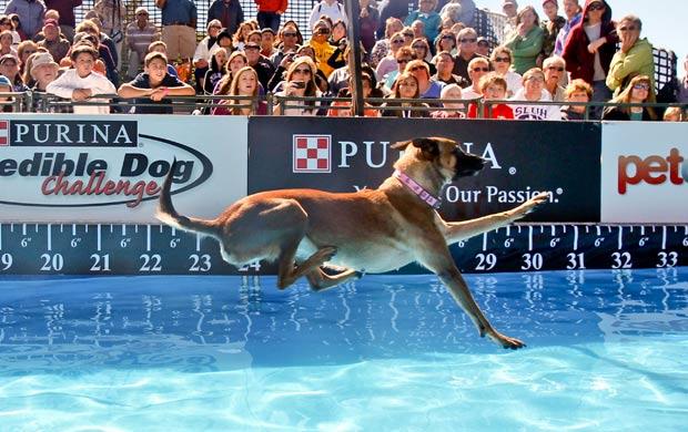 Vhoebe venceu o desafio com um salto de 9,6 metros. (Foto: AP)