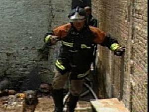 Bombeiro resgata cachorro durante incêndio em MS (Foto: Reprodução TV Morena)