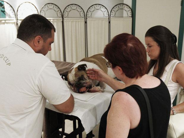 Mulher se despede de cão em crematório na cidade de Boom (Foto: Yves Herman/Reuters)
