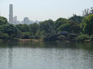 parque_ibirapuera (Foto: Divulgação/SVMA)