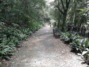 parque_volpi (Foto: Divulgação/SVMA)