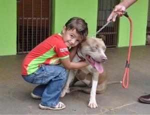 Em canil, Vinícius abraça a pit bull Nina (Foto: Hélder Rafael/G1 MS)