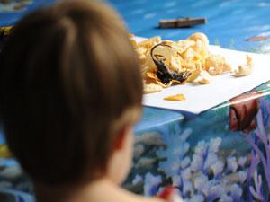 Menino de 5 ano não viu o rato e comeu o salgadinho (Foto: Agência RBS)