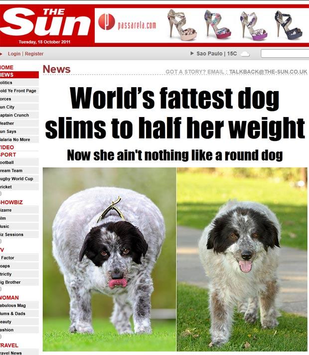 'Cassie' perdeu mais da metade do seu peso, passando de 58 quilos para 28,6 kg. (Foto: Reprodução/The Sun)
