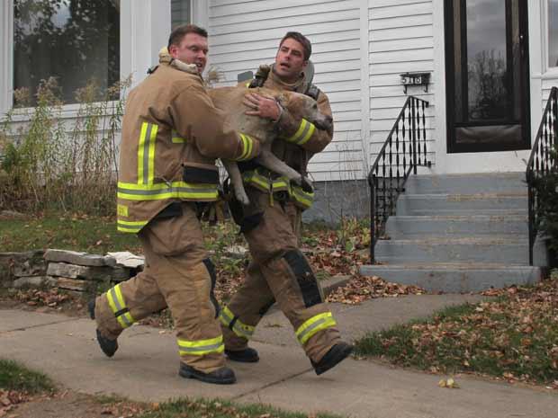 Logo após aplicar a respiração artificial, os bombeiros correram com Coda até um veículo para que ele fosse transportado a um veterinário (Foto: AP Photo/Dan Young/Wausau Daily Herald)