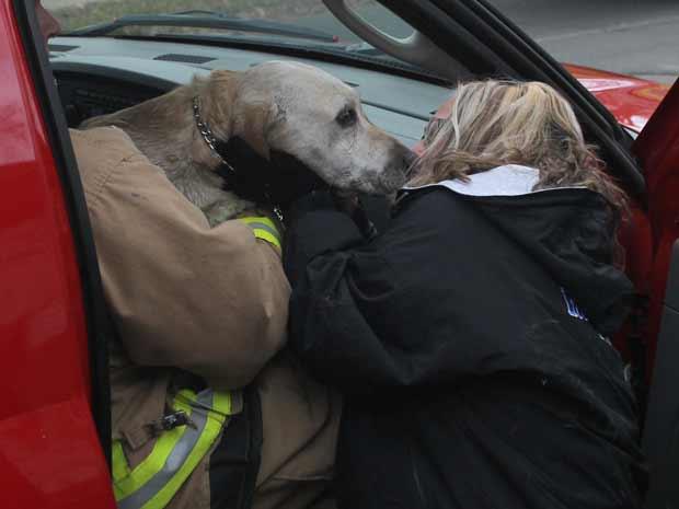 Antes de partir para o hospital, Coda ganhou um beijo no focinho de Kim Carlson, uma de suas donas. Após ser socorrido, o cão passa bem (Foto: AP Photo/Dan Young/Wausau Daily Herald)
