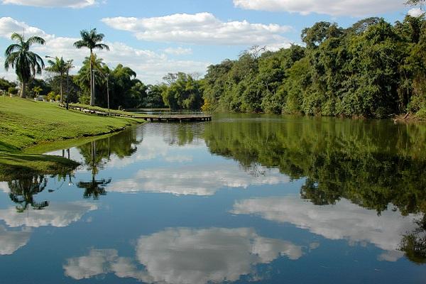 Criado em 2005, o Jardim Botânico tem uma área de 109.655m². (Foto: Divulgação/Amma)