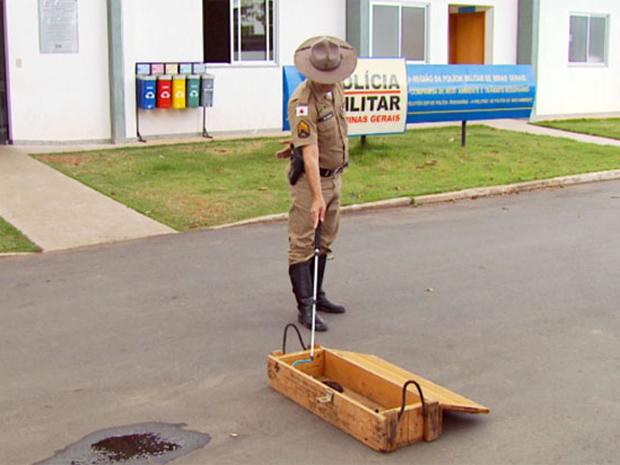 Correios acionaram a Polícia Militar do Meio Ambiente para abrir a encomenda (Foto: Reprodução/TV Globo)