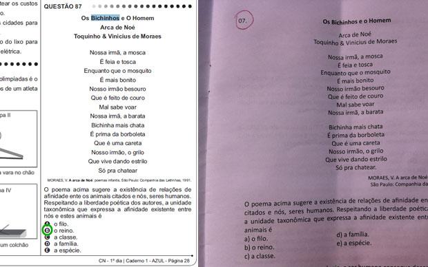 Questão da prova amarela de ciências da natureza do Enem (à esquerda) e a questão fornecida na apostila de estudos (à direita) (Foto: Reprodução)