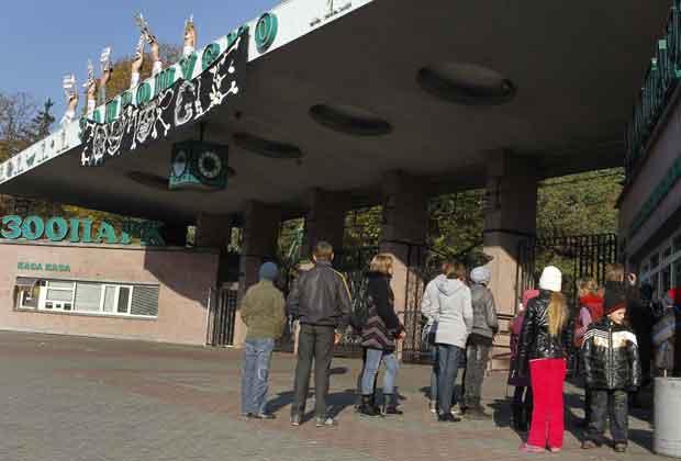 Elas pediram que o zoo seja fechado e que os bichos sejam levados para outras cidades (Foto: AFP)