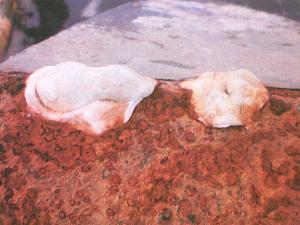 Foto mostra reparos precários na estrutura corroída usando resina semelhante a époxi no barco Imagination (Foto: Divulgação)