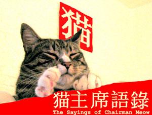 O gato Chairman Meow, que, como o 'quase xará' Mao Tse-tung, também tem preceitos filosóficos (Foto: Reprodução)