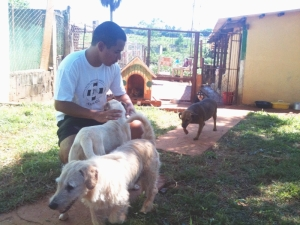 Voluntário adotou dois cães na feira da Aspaan em Goiânia (Foto: divulgação)