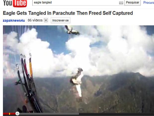 Águias voam na direção do paraglider de Vladimir Tsarkov (Foto: Reprodução de vídeo)