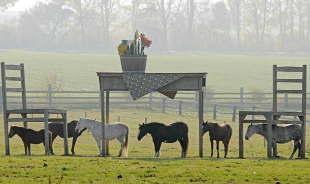 Cavalos ficaram parecendo minúsculos. (Foto: Jens Meyer/AP)