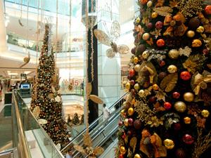 Shopping Morumbi  (Foto: Flavio Moraes / G1)