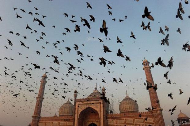 Milhares de muçulmanos indianos se reuníram nesta segunda-feira (7) em volta da mesquita Jama Masjid, em Nova Délhi, para dar início com as orações matinais ao Eid al-Adha, o Festival do Sacrifício. (Foto: AFP)