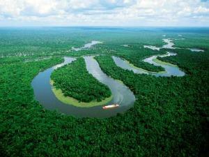 Vista aérea da Floresta Amazônica cortada pelo Rio Amazonas (Foto: Divulgação)