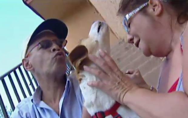 Casal Tony Morel e Traci Belling diz que foi salvo de incêndio por cão. (Foto: Reprodução/WSVN)
