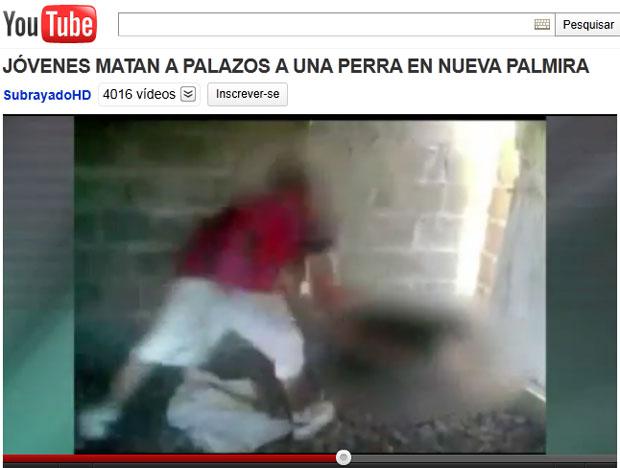Vídeo mostrando a crueldade foi postado na internet e repercutiu na TV uruguaia (Foto: Reprodução/Youtube)