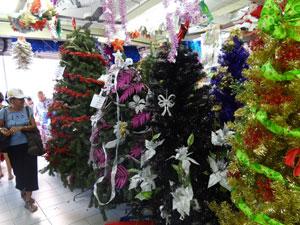 Lojas vendem árvores de R$ 9 a R$ 500 (Foto: Luna Markman/G1)