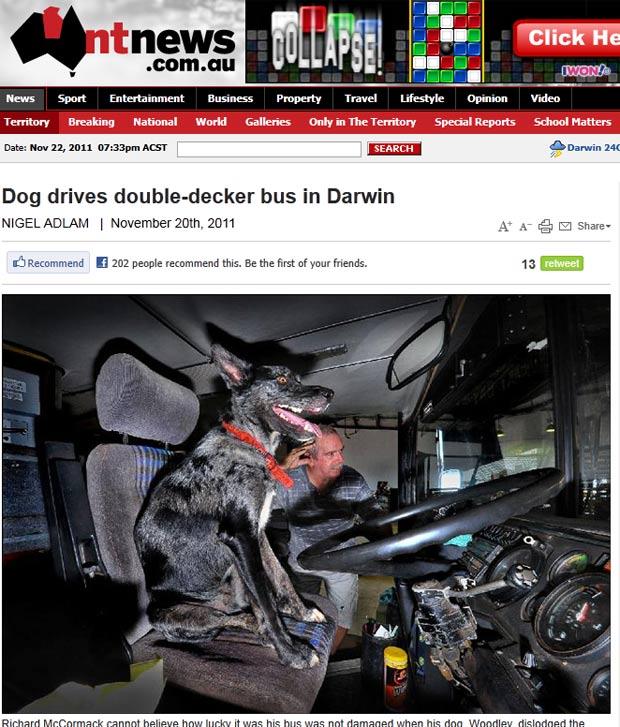 Cão foi visto 'dirigindo' ônibus de dois andares e 20 toneladas na Austrália. (Foto: Reprodução/NT News)