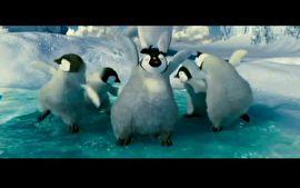 Happy Feet (Foto: vídeo)