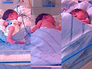 Sem inseminação artificial, mulher tem trigêmeos no oeste da Bahia (Foto: Reprodução/ TV Oeste)