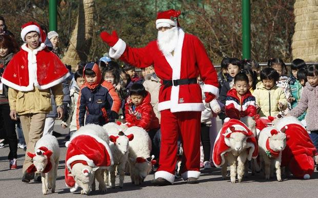 Parque usou ovelhas em trajes natalinos para divulgar temporada de férias de Natal.  (Foto: Jo Yong-Hak/Reuters)