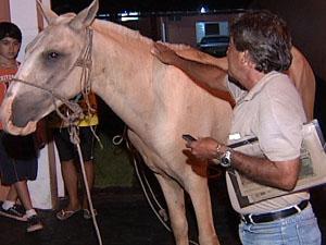Alarico reencontra Curisco após desaparecimento (Foto: Reprodução TV Integração)