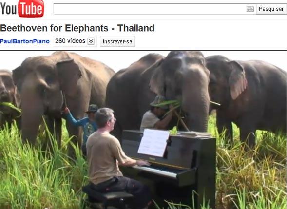 O britânico Paul Barton toca piano a poucos metros de elefantes cegos que estão em santuário da vida selvagem na Tailândia (Foto: Reprodução/YouTube)