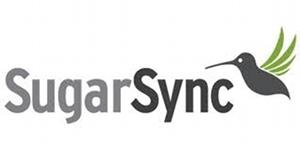 Com o SugarSync o usuário pode armazenar gratuitamente até 5 GB de conteúdo usando o serviço (Foto: Reprodução)