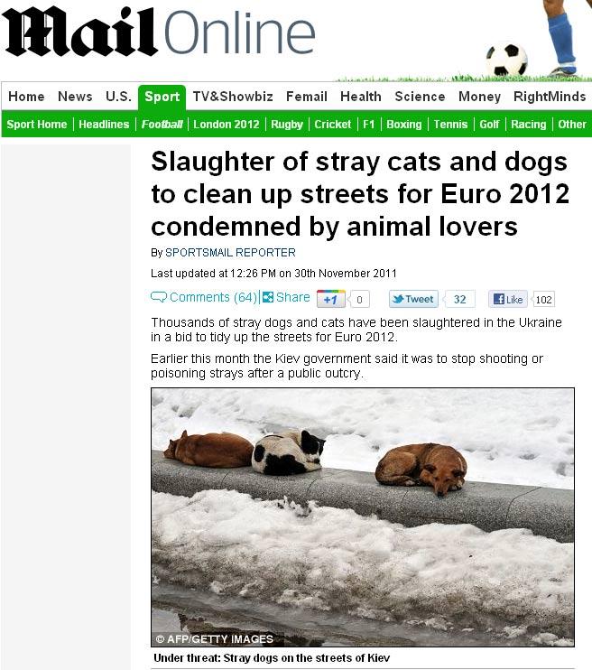 Cães e gatos que vivem pelas ruas da Ucrânia têm sido mortos, denuncia a organização ambiental Peta (Foto: Reprodução)