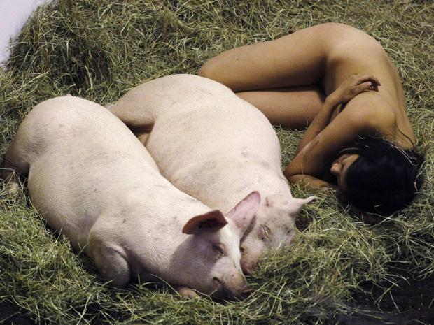 """A artista americana Miru Kim deita ao lado de dois porcos como parte de uma instalação chamada  """"I Like Pigs and Pigs Like Me (104 hours)"""", em Miami, nos Estados Unidos, na quinta-feira (1º). A performance faz parte de exposição na feira Art Basel (Foto: Reuters/Hans Deryk)"""
