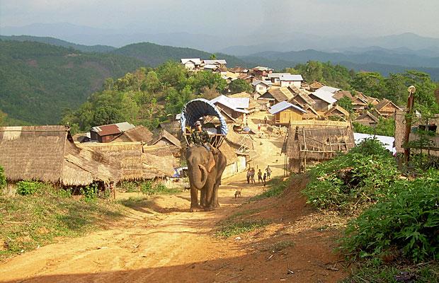 Boom Boom, que significa 'livros' na língua lao, foi doada por uma associação de proteção de elefantes e entrega livros em regiões de difícil acesso da província de Sainyabuli  (Foto: Divulgação)