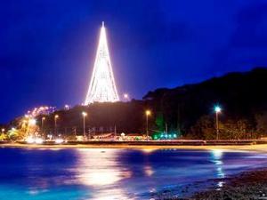 'Árvore de Luz' tem cerca de 30 mil lâmpadas (Foto: Divulgação/Energisa)