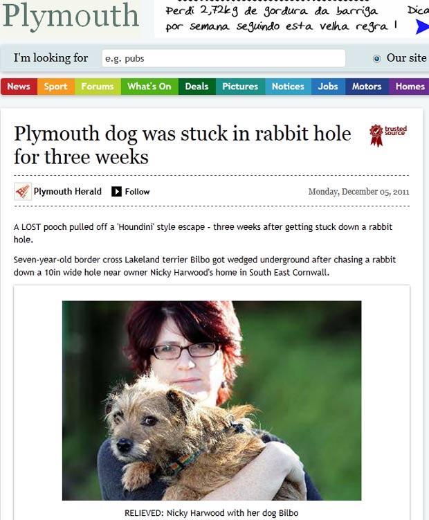 Cão ficou três semanas preso em uma toca de coelho. (Foto: Reprodução)