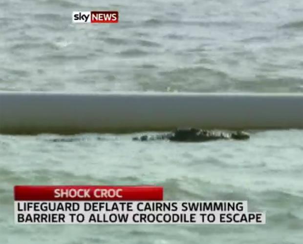 Crocodilo de 2,5 metros de comprimento foi flagrado em uma praia popular de Cairns. (Foto: Reprodução)