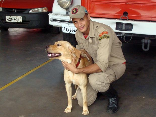 Cão perdido vira mascote dos bombeiros em MS (Foto: Tawany Marry/G1MS)