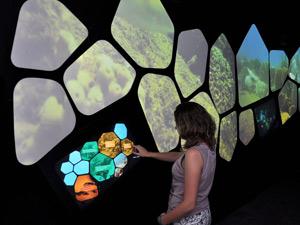 Interactive 3D Display at Coral Reef Natural Park Visitor Center
