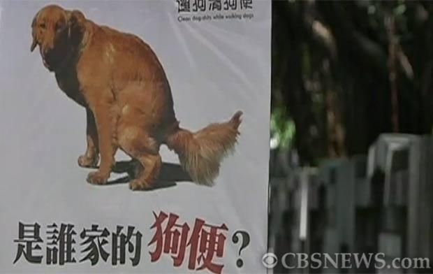 Nova Taipei City lançou campanha para manter as ruas limpas. (Foto: Reprodução)