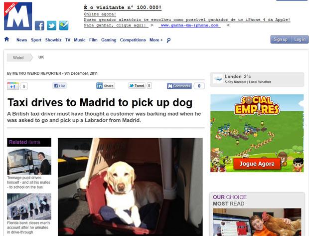 O cachorro que foi levado de Madri a Londres, em foto feita pelo taxista (Foto: Reprodução)