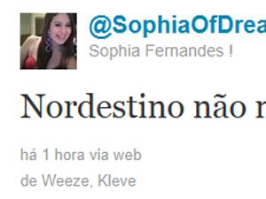 Reprodução de imagem do perfil no Twitter atribuído a Sophia Fernandes (Foto: Reprodução)