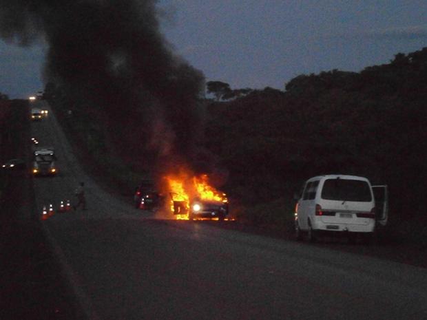 Atropelamento em Goiás (Foto: Rogerio Pereira Rodrigues/VC no G1)