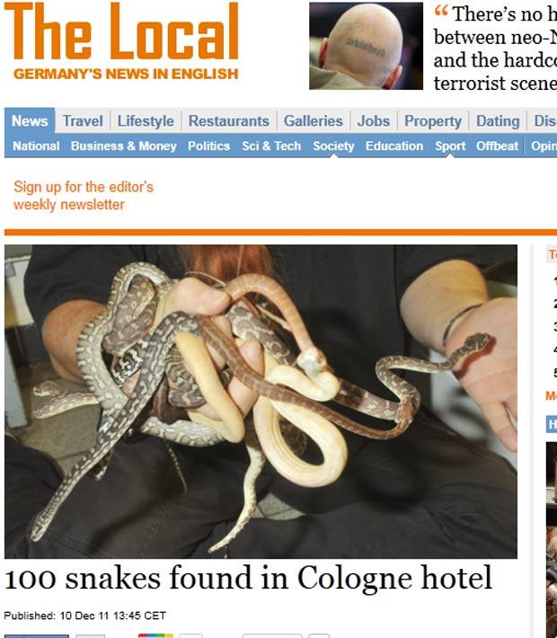 Polícia de Colônia achou cem cobras, 70 tartarugas e 20 sapos coloridos em quarto de hotel. (Foto: Reprodução)
